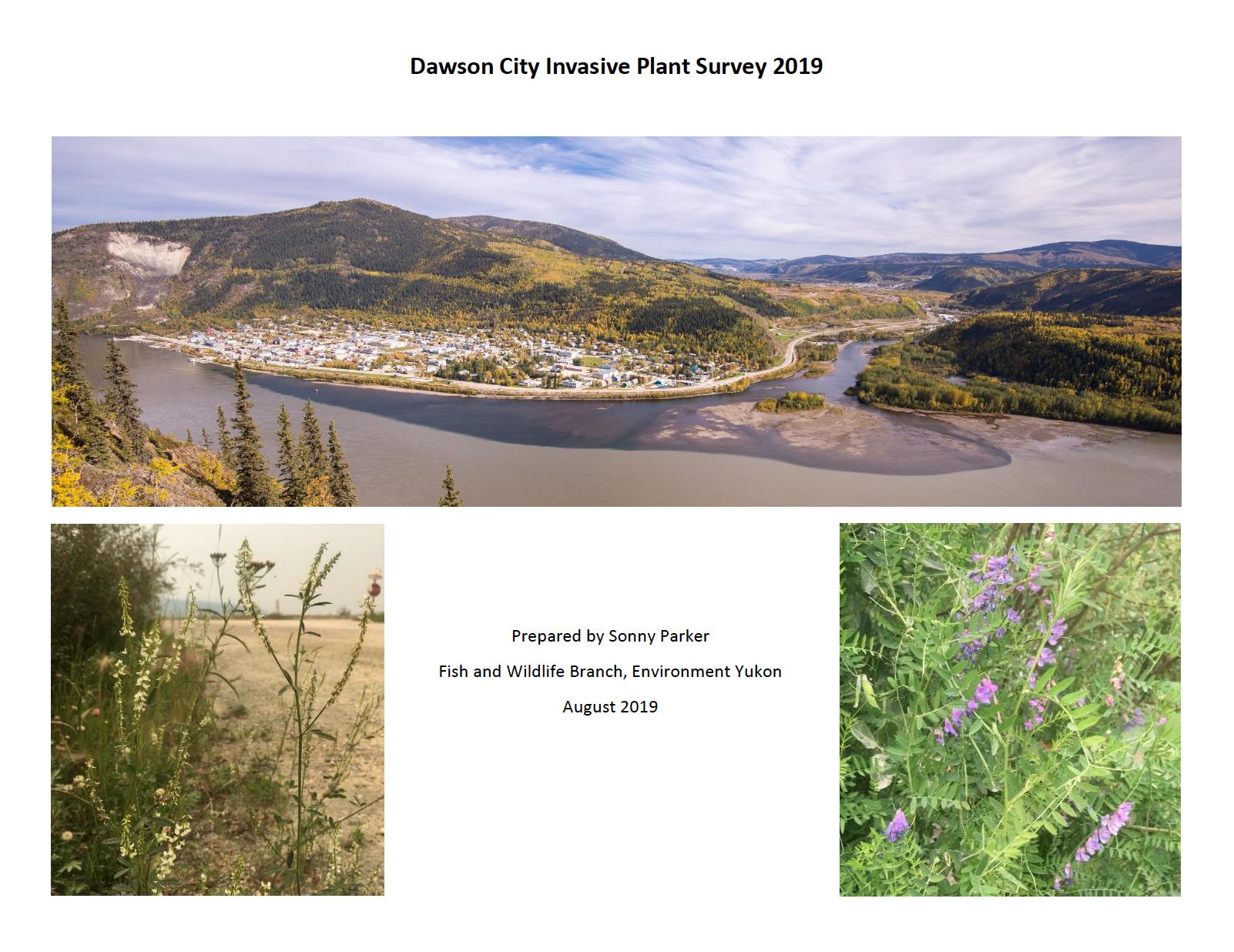 Invasive Plant Survey Dawson