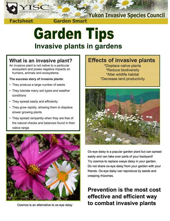 Garden Smart (tips)