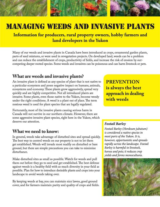 Managing weeds and invasive plants