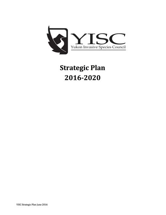 YISC Strategic Plan 2016 - 2020